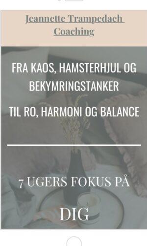 """Mentoring forløb 1:1 """"Fra hamsterhjul til harmoni og balance""""."""